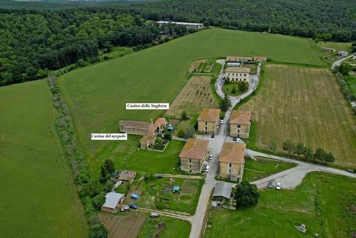 Pietratonda Casina del Nespolo - Provincia di Grosseto - House