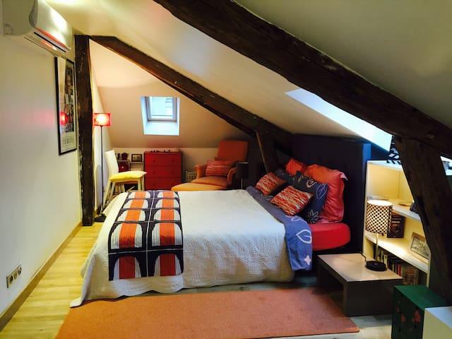 Étage privé dans grand appartement - Chateauroux - Lejlighed