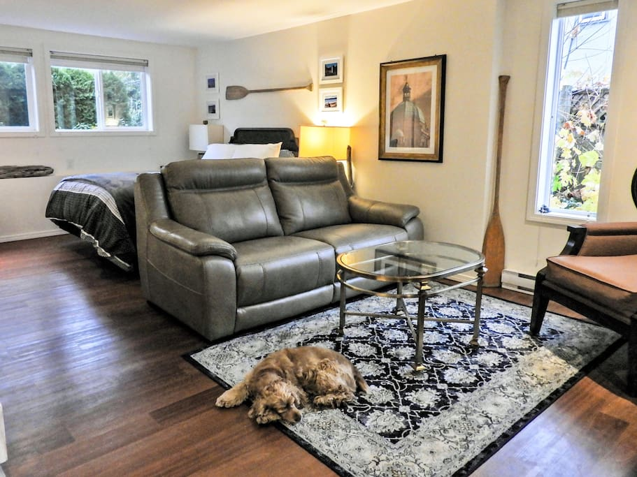 Leather sofa, easy-clean floors, bright windows with bottom-up or top-down blinds. Almost all of the framed pieces are local photos taken by a charming, talented, and devilishly handsome local photographer...