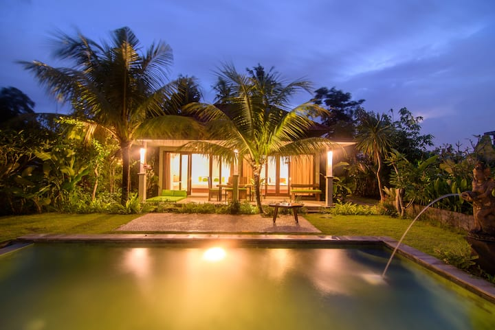 2BR Private pool villa kitchenette ricefield view