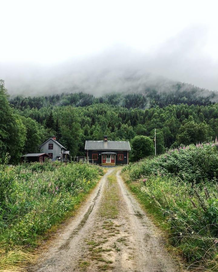 Mysigt torp i Branäs från 1800-talet