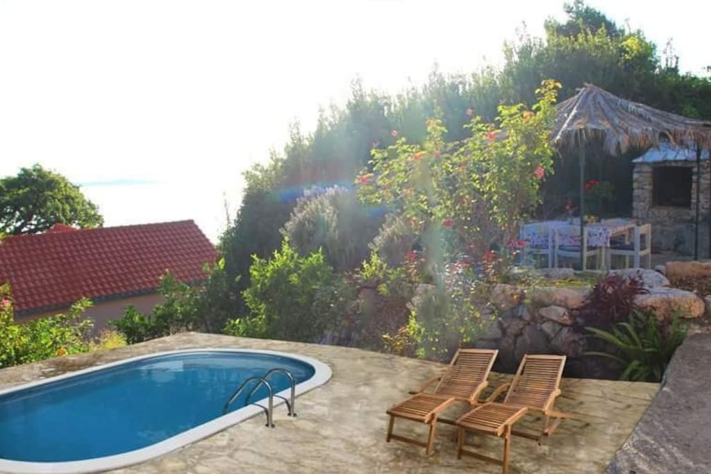 Svagusa Holiday House With Swimming Pool Houses For Rent In Plat Dubrovnik Neretva County