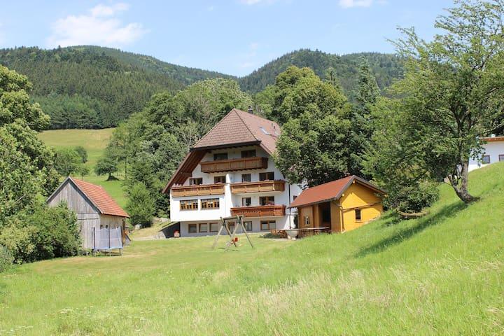 """Ferienwohnung """"Bergwiese"""" Hugenhof - Simonswald - Appartement"""