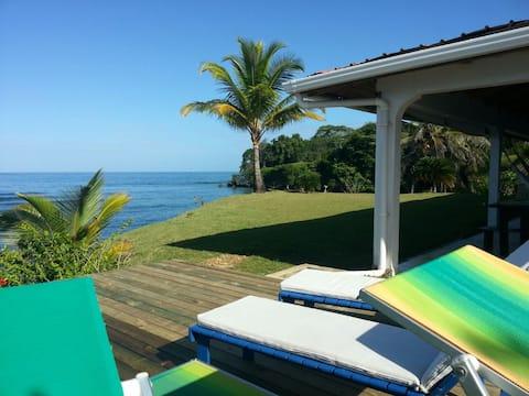 Sea front Villa with private beach