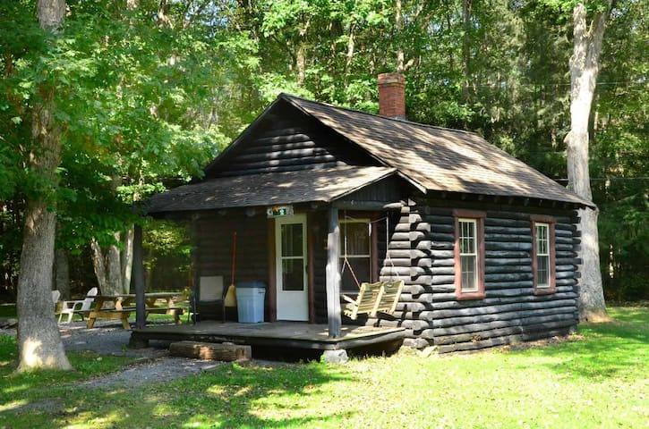 Rustic Cabin near Swallow Falls State Park, has a fire pit and charcoal grill!