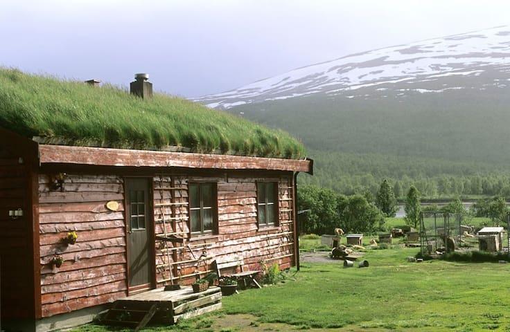Cabin on the Huskyfarm Innset