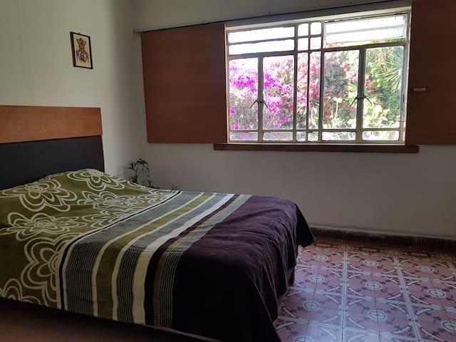 Ideal para conocer el corazón de Puebla