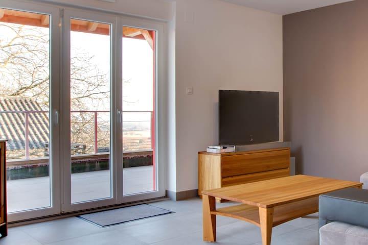 chez Cathy - Heiligenstein - Appartement