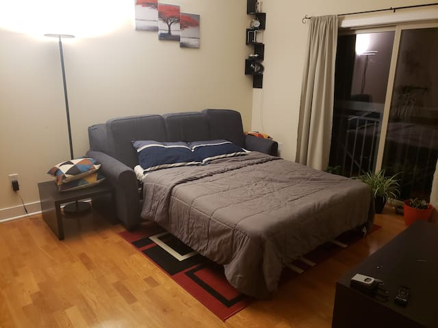 Living room with queen sofa bed. 1 mile to uptown.