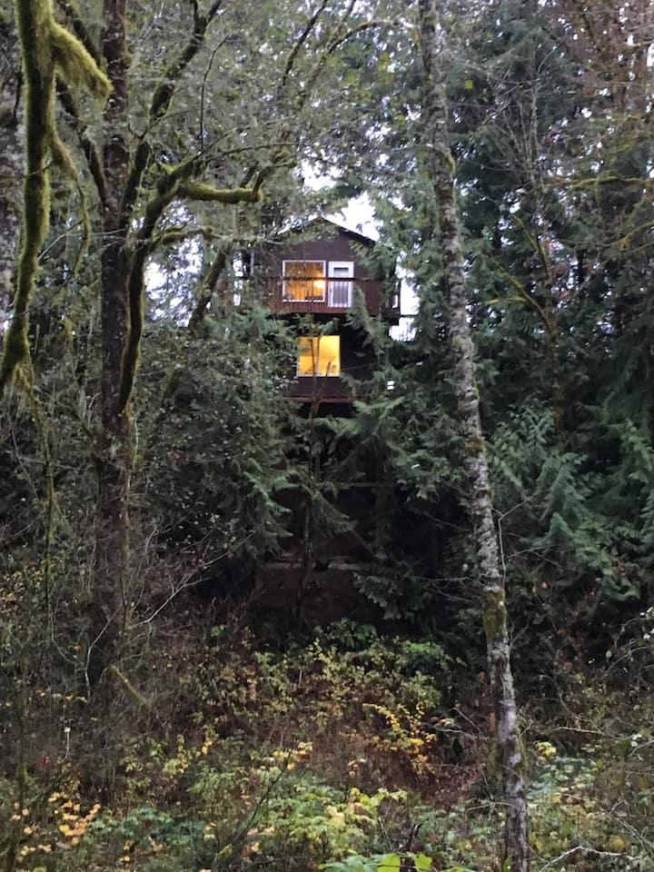 Hidden House.