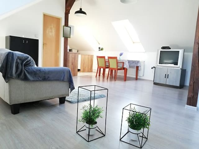 Apartman Podlavice
