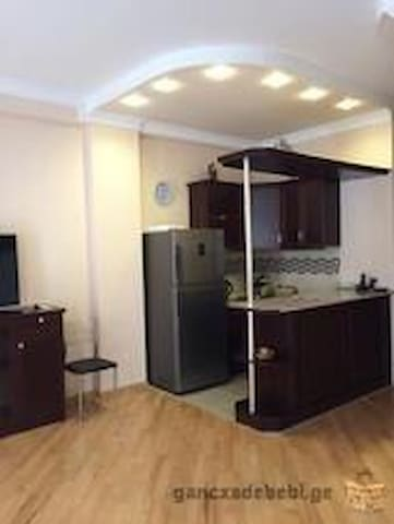 Very warm and comfy apartment, - Tbilisi - Pis