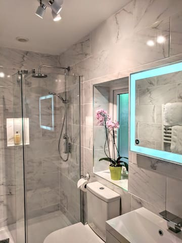 The chic shower room