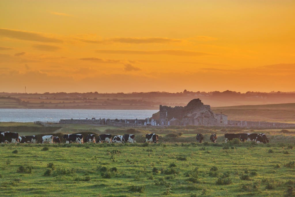Enjoy frequent spectacular sunsets during a unique stay with us on our beautiful dairy farm by Bannow Church in historic Bannow Bay