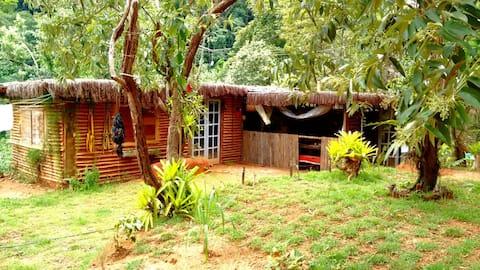 Casa de bioconstruçao em sítio em Silva Jardim.
