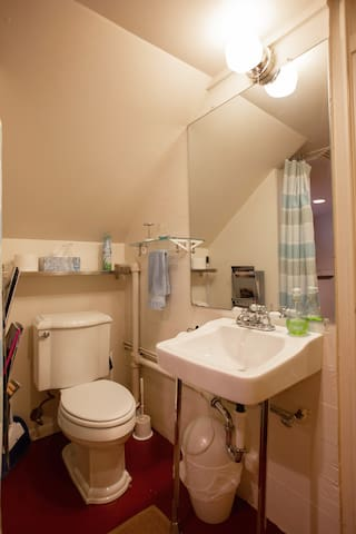 The bathroom area is small but very clean and organized.   It is separated from the rest of the room by a curtain.