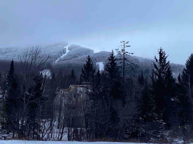 Cozy Ski-in/Ski-out Mountain Condo