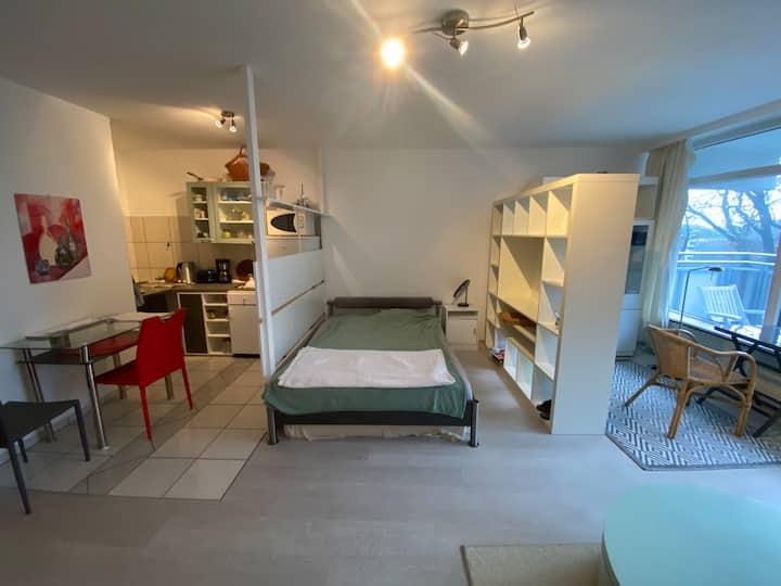 geräumige , helle 1 -Zimmer Wohnung mit gr. Balkon