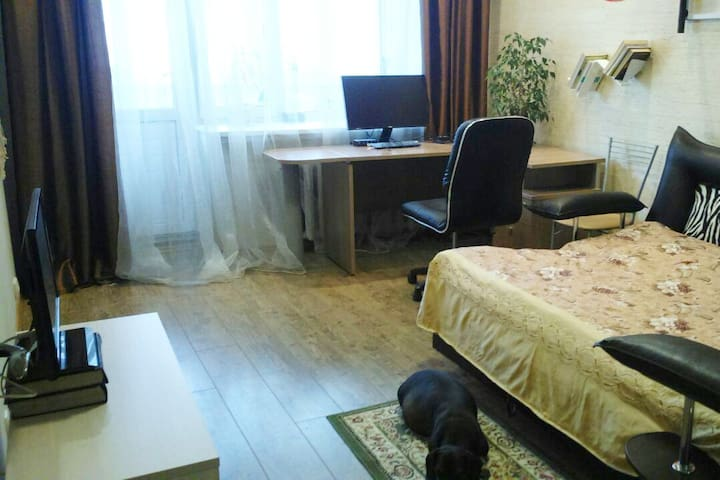 Nice apartment (near the Center of Moscow)
