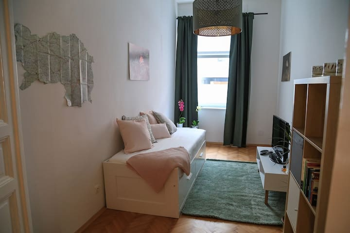 lovely apartment in the heart of Graz (1-4 pax)