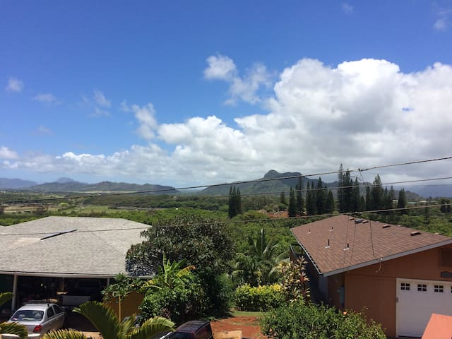 View of the mountain from lanai