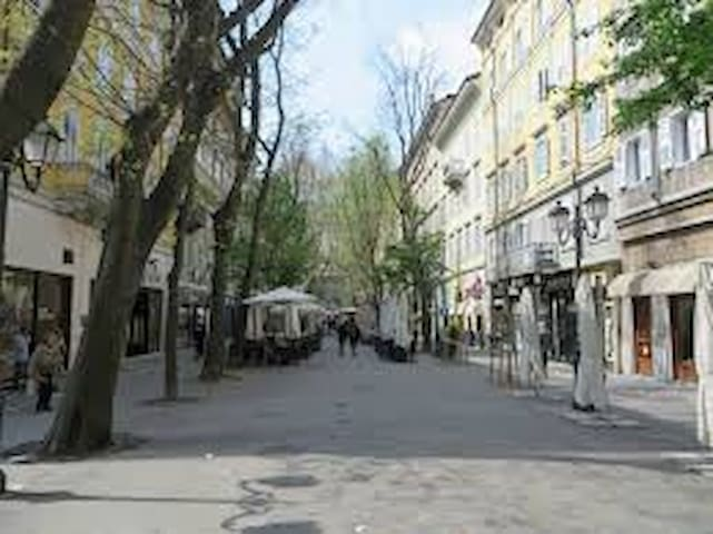 Viale Settembre, just 1 minute from the apartment.  Bars, cafes, cinema, banks...