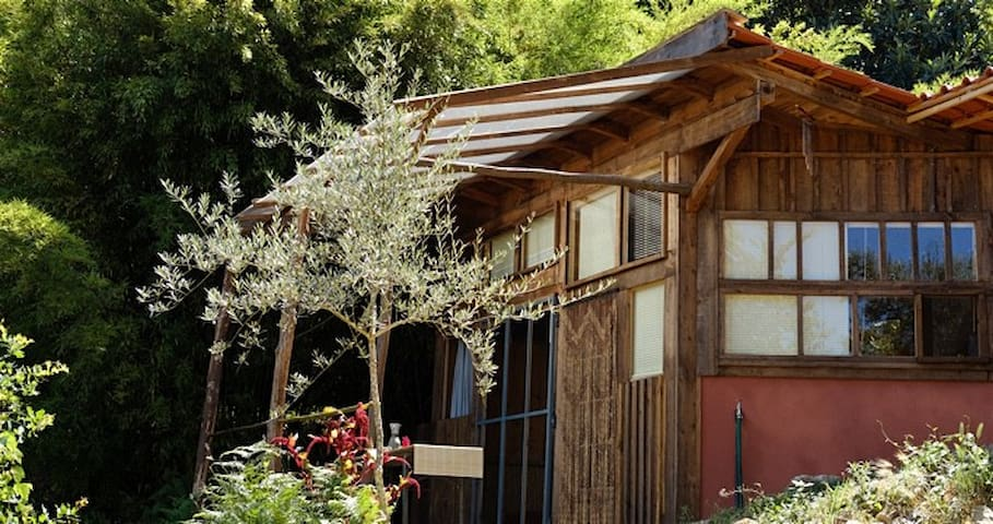Wooden Zen House in gentle swaying bamboo - Póvoa de Midões - Gjestehus