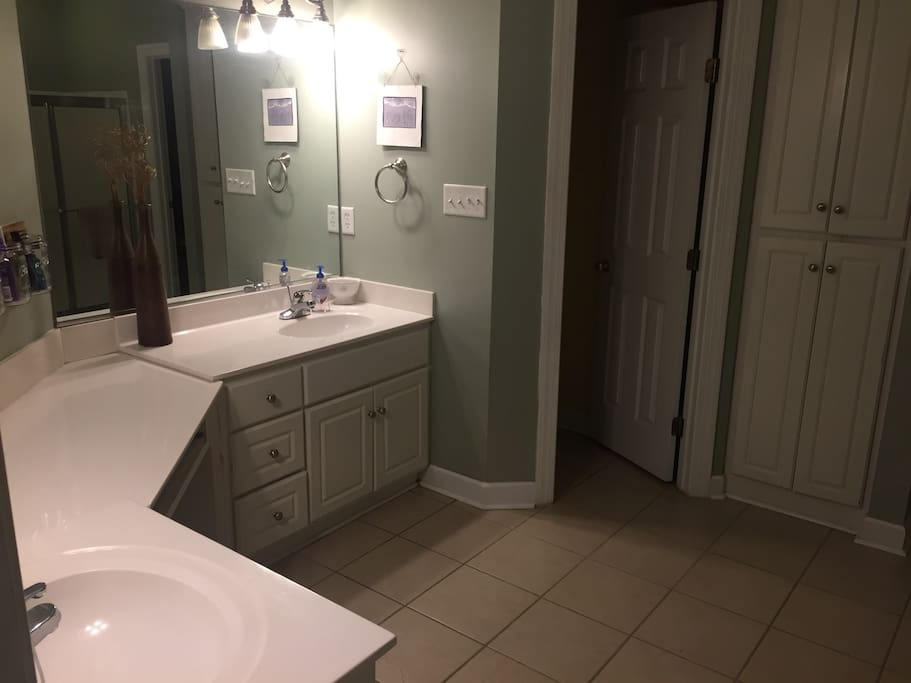 Master bathroom with jacuzzi tub and standing shower