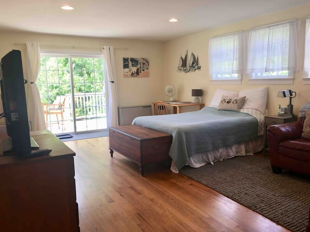 Queen bed, shiny wood floors, sliding door to back deck
