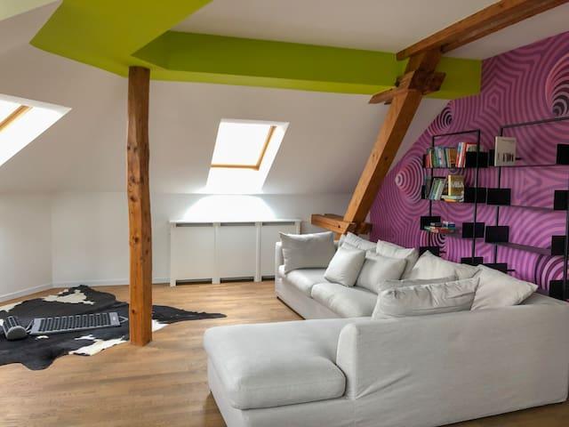 Hip Loft Apartment in the heart of Zurich