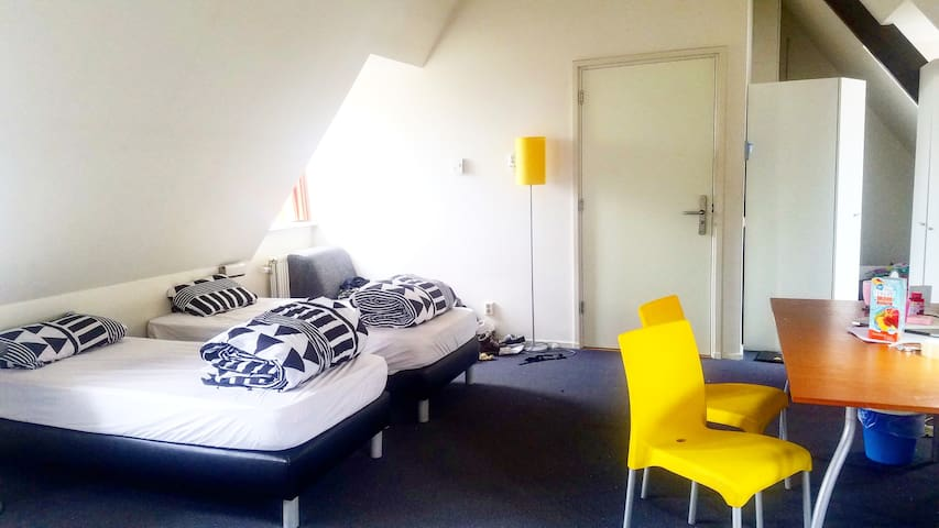 shared apartment in city centre(girls only) - Leiden - Apartment
