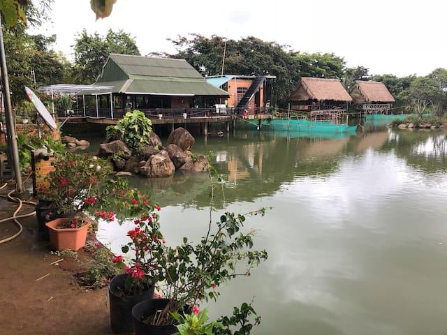 Homestay and orchid farm, fishing lake