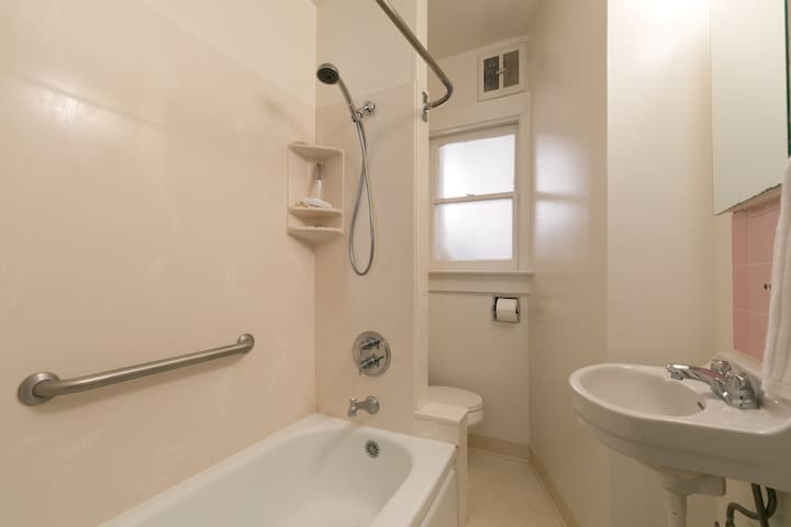 Bathroom showing hand-held shower and safety grab-bar, basin, medicine cabinet with mirror