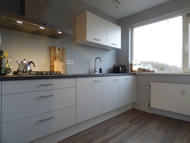 Spacious apartment nearby the centre - Utrecht