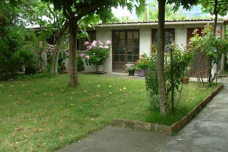 appartement centre ville montauban - Montauban - Casa