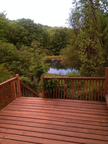 Quiet woodland escape - Ellenville - Appartement
