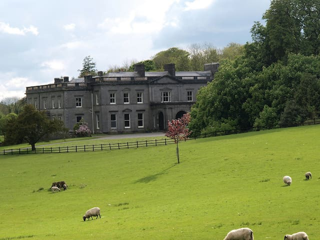 Castle and Lake View Double Room | Temple House - Ballymote - Bed & Breakfast