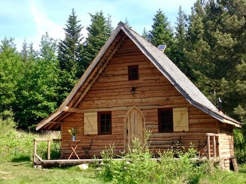 Pomme de Pin, Bellessise - tranquil woodland cabin