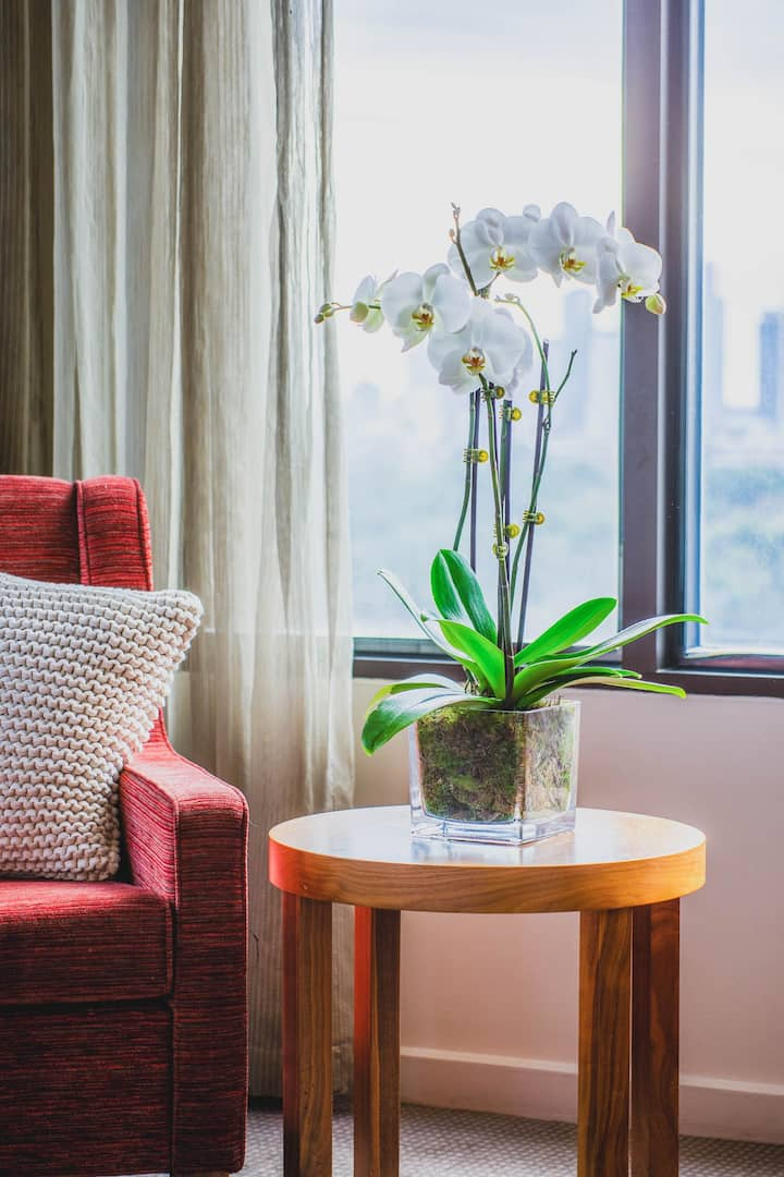City View King with Balcony - Pet Friendly at View Melbourne