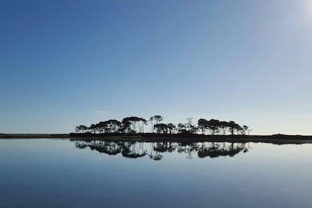 Gîte de l'île  aux pins - Riantec
