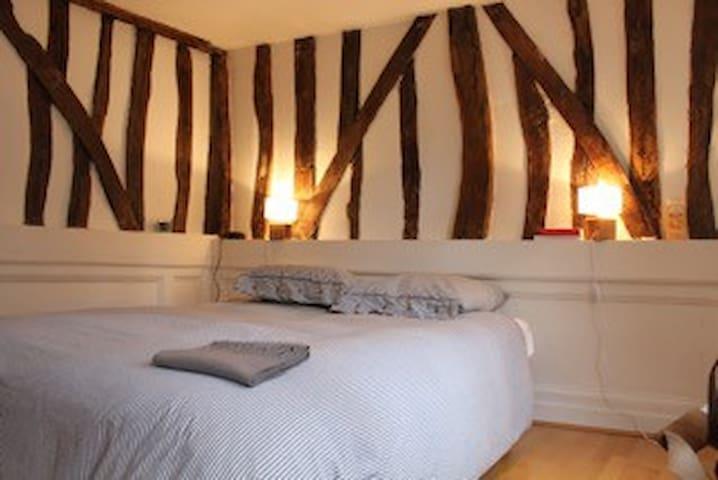 Appartement original dans l'hypercentre de Rouen - Rouen - Apartment