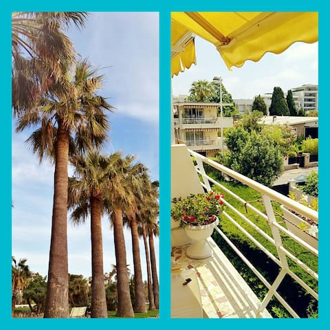CANNES CROISETTE PALM BEACH ! 35m2!  3 terrasses