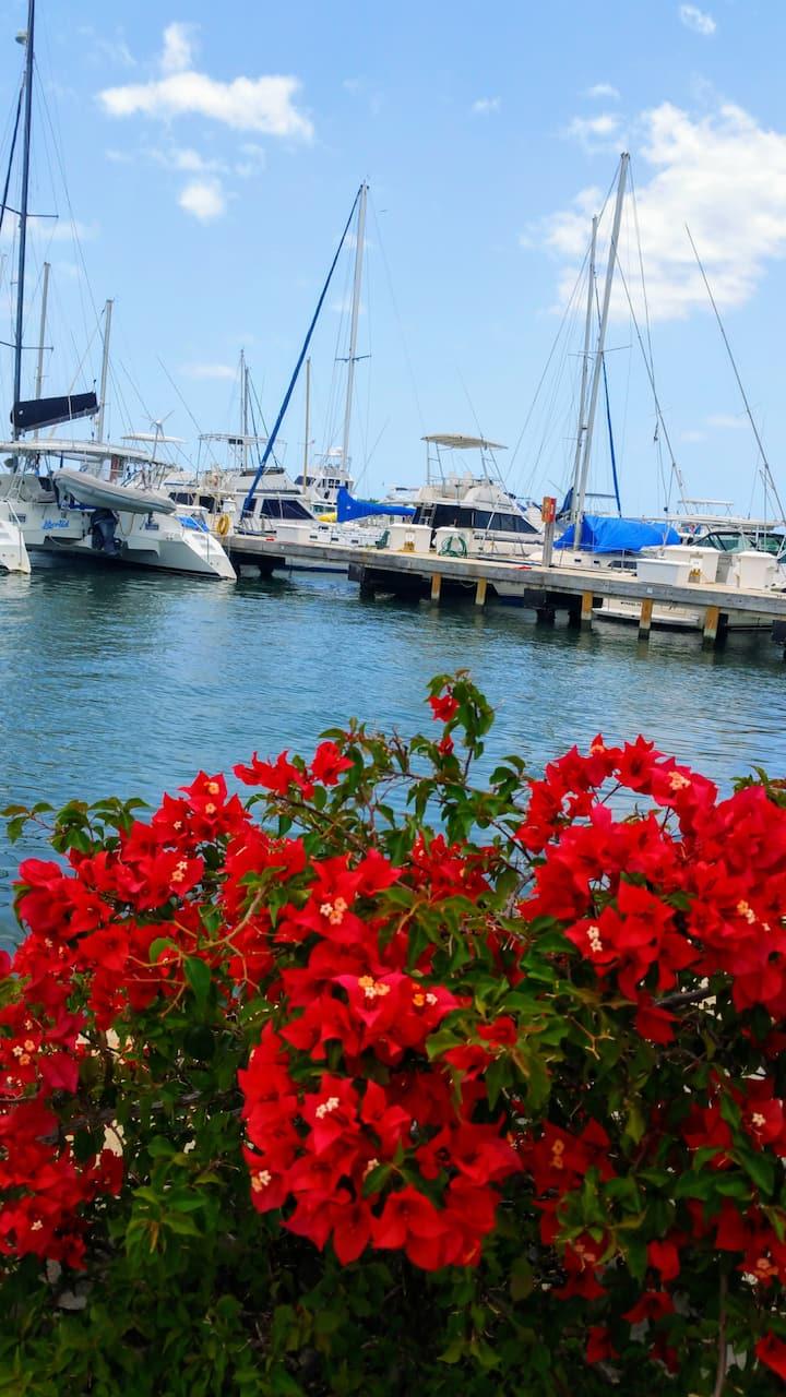 Única experiencia en el mar en Marina Puerto Real