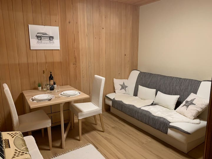 IQ Studio - wooden eco friendly appartment