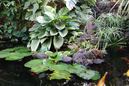 Zen dans Papeete - Papeete