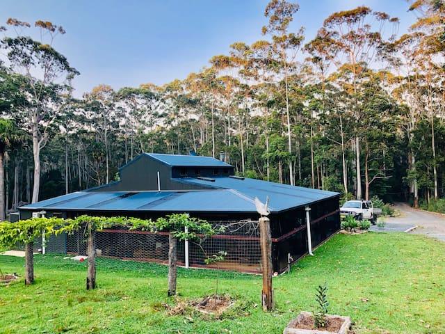 Innerocean Rainforest  Retreat