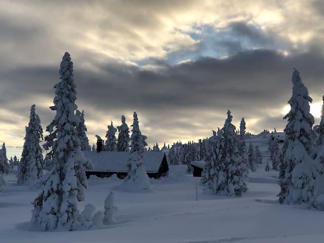 Cosy, family style cabin at Storåsen, Sjusjøen