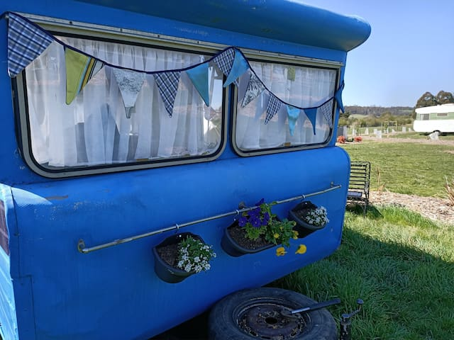 Blue the Vintage Caravan @ 175 Hearts Haven
