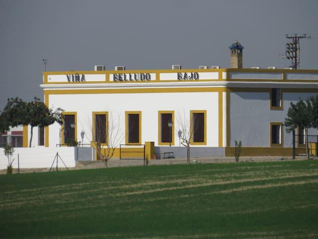 Casa rural entre Jerez y El puerto. - เอล ปูเอโต เดอ ซานตา มาเรีย