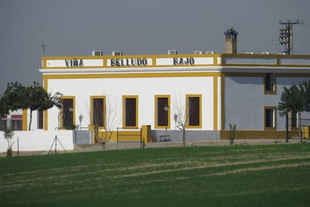 Casa rural entre Jerez y El puerto. - Hus